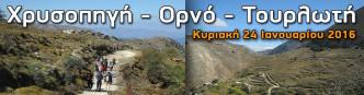 xrysopygi-orno-tourloti-oreivatikos-irakleiou2