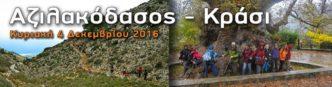 azilakodasos-krasi-oreivatikos-irakleiou-2016
